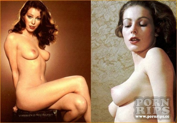Annette Haven - Pornstar Collection